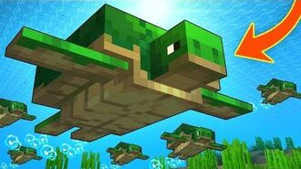Everything You Need To Know About TURTLES In Minecraft!-2