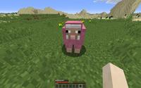 A Pink Sheep