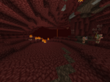 Nether Wastes