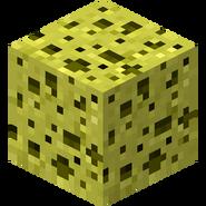 Old sponge