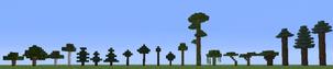 Trees 13w36b
