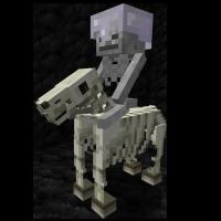 Skeleton Trap Horse   Minecraft Wiki   FANDOM powered by Wikia