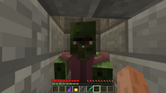 Zombie Villager-0