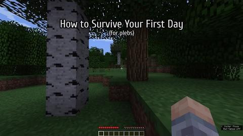 How to survive your first day - Minecraft (for plebs)