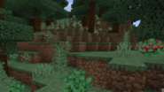 Natural Sweet BerriesB
