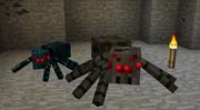 Luolahämähäkki ja tavallinen hämähäkki