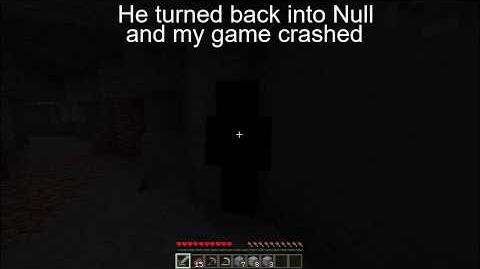 The Null Sighting (FAKE)