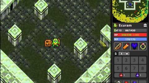 ROTMG-Level 1 to level 20