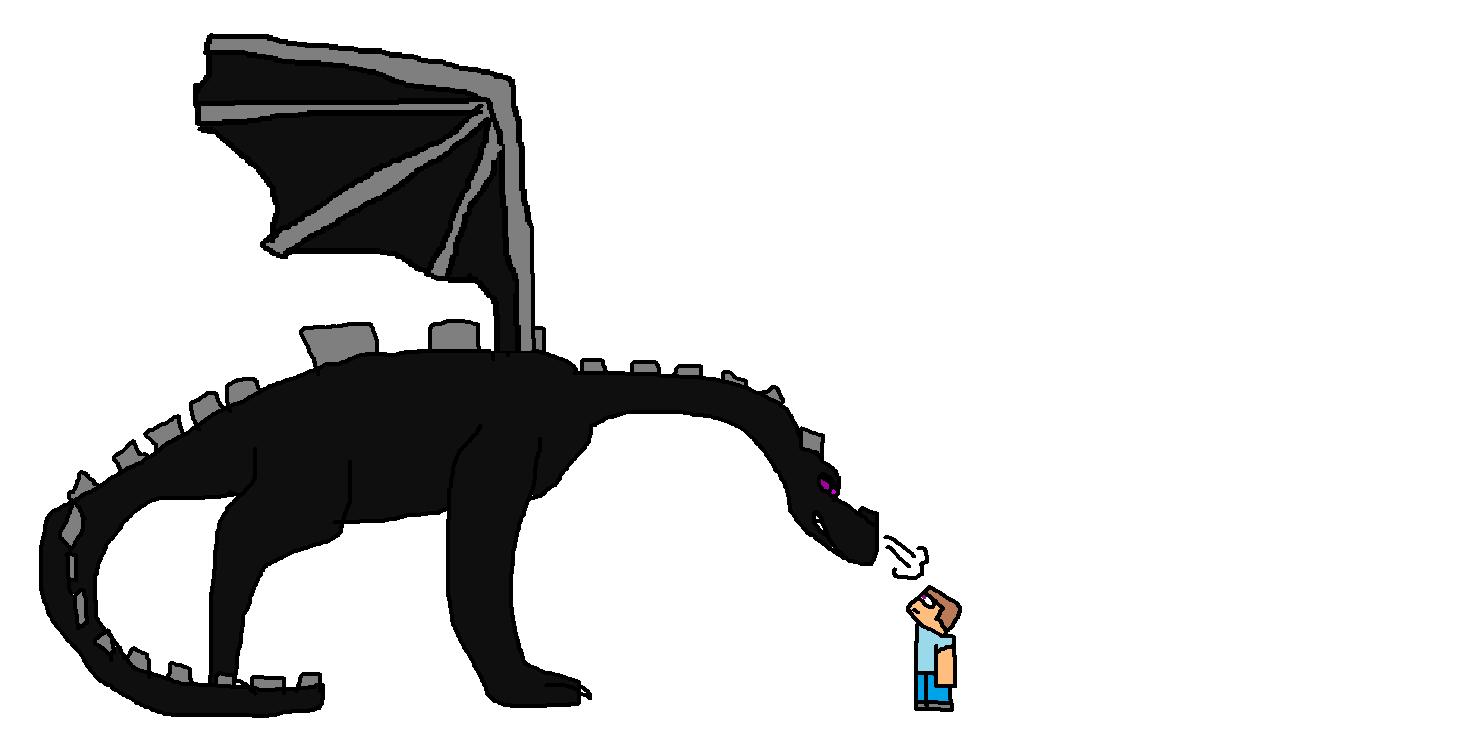 Ender Dragon And Steve