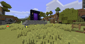 Portal Real World