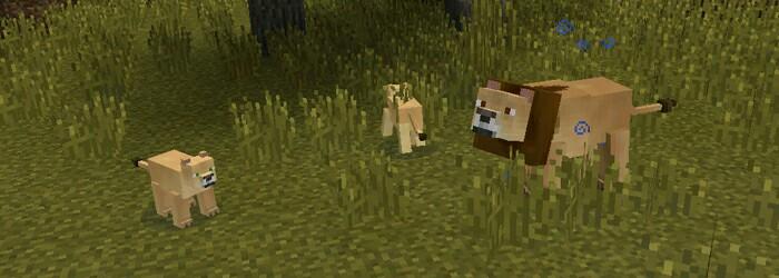 Lion Minecraft Fanon Wiki Fandom Powered By Wikia