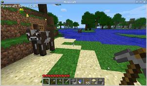 MineCraft Screenshot by KhuseleN