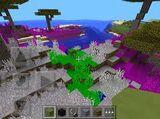 Rainbow Biome