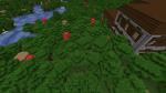 800px-Dark Forest