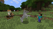 Captura5 Minecraft (NSE)