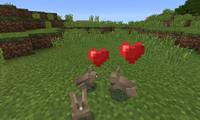 Heart (partícula)