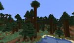 800px-Giant Tree Taiga