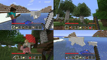 Captura10 Minecraft (NSE)