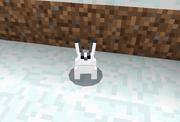 Conejo blanco PE