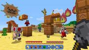 Captura2 Minecraft (NSE)