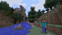 Captura9 Minecraft (NSE)