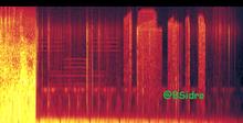Espectrograma11 completo
