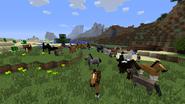 Varios caballos