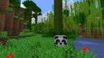 800px-Bamboo Jungle