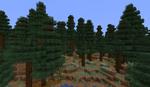 800px-Giant Spruce Taiga