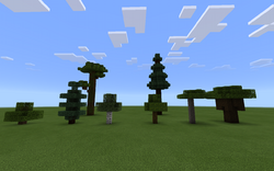 Árboles actuales
