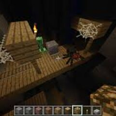 Some more of the Mineshaft