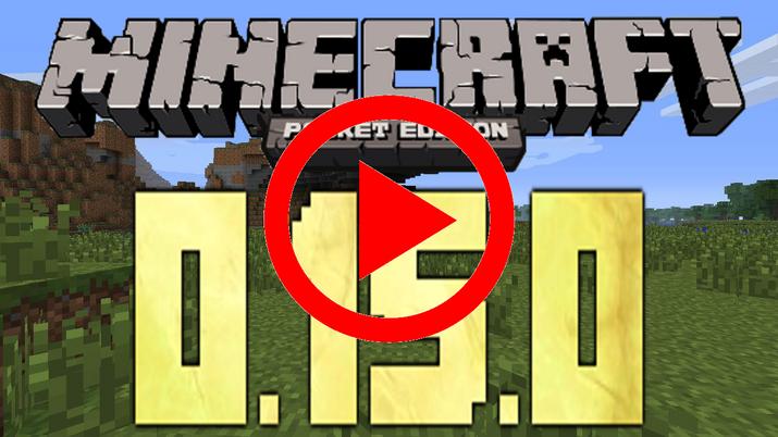 minecraft bedrock edition no shields