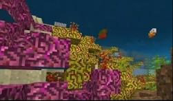 Coral, Update Aquatic