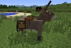 File:Pack horse.jpg