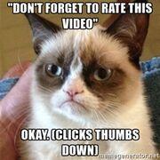 Grumpy kitten -(