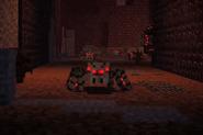 Prison Spiders