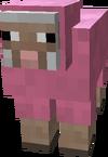 Sheep Pink