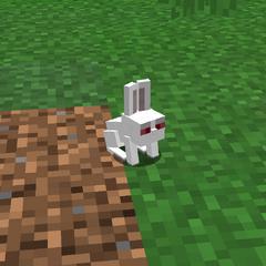 <i>Killer Bunny</i> Pet