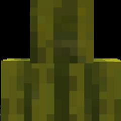 Melonhead Morph