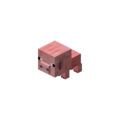 <i>Pig</i> pet.