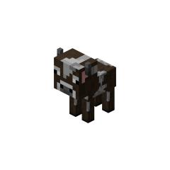 <i>Cow</i> pet.