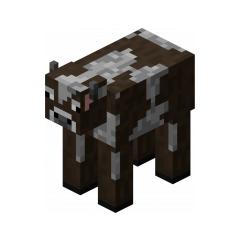Cow Morph