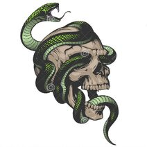 Skull-snake-illustration-vector-white-background-58040955