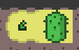 Growing Cactus.png