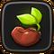 Evergreen Seeds