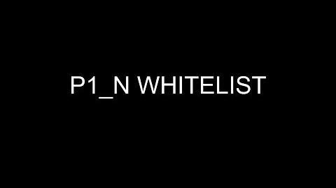 Whitelist-P1'N