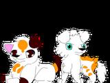 Fixer Uppers: Max x Gidget pups