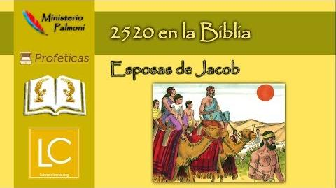 Profecía 2520 en la Biblia - Esposas de Jacob