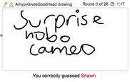Draw It Shawn