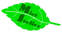 Mint Studios Wiki